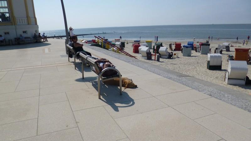 Promenade auf Borkum mit Sitzbänken